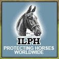 The International League for the Protection of Horses